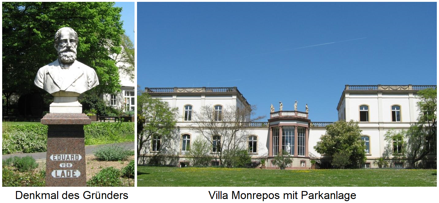 Monument of the founder Eduard von Lade / Villa Monrepos with park