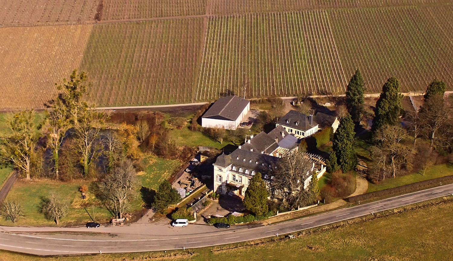 Egon Müller-Scharzhof - winery building and vineyards