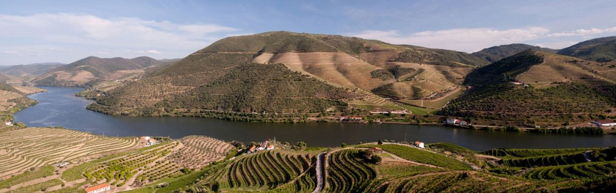 Douro - Symington